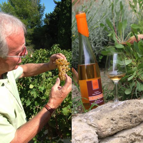 E-Commerce – Delightful Provence (wine)