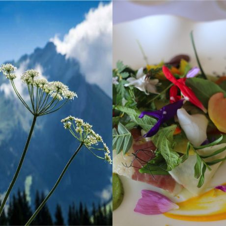 E-Commerce – Taste of French Alps (featured image)